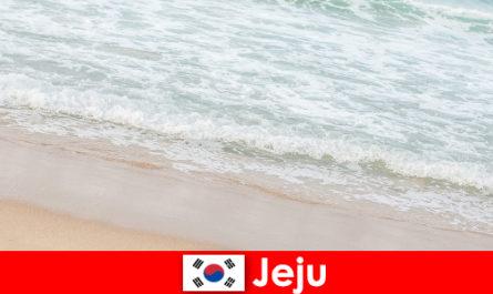 Jeju με την ψιλή άμμο και τα καθαρά νερά του ένα ιδανικό μέρος για οικογενειακές διακοπές στην παραλία