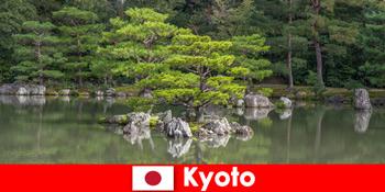 Ιαπωνικοί κήποι προσκαλούν αγνώστους για χαλαρωτικούς περιπάτους στο Κιότο