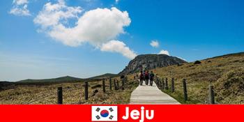 Τουρίστες περπατούν μέσα από το φανταστικό φυσικό τοπίο στο Jeju Νότια Κορέα