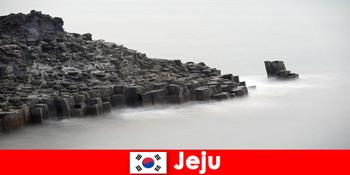 Οι ξένοι εξερευνούν δημοφιλείς εκδρομές στο Jeju Νότια Κορέα
