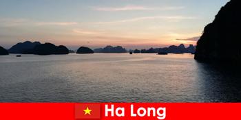 Τέλειες διακοπές στο Ha Long Vietnam για τονισμένους τουρίστες από το εξωτερικό
